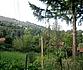 Sales Development land , Vlado Trichkov village,